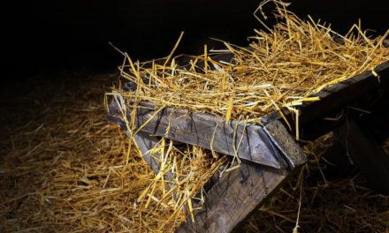 No Advento a Igreja é o berço que espera o Messias