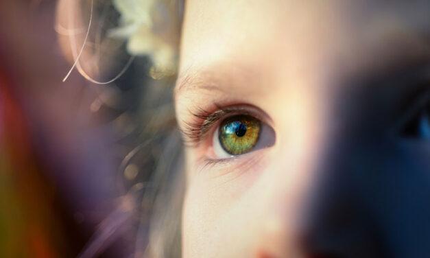 Pôr sempre os olhos nos Teus olhos…