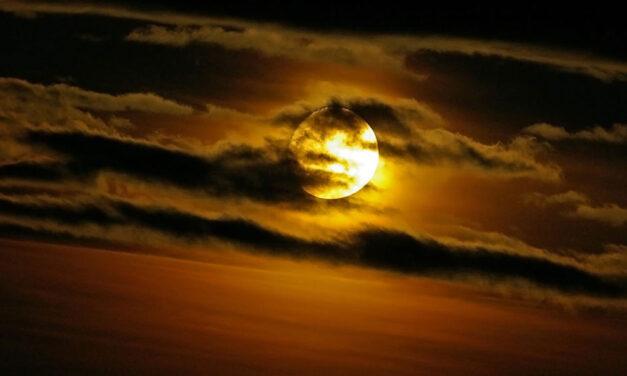 Amo tanto a noite como o dia