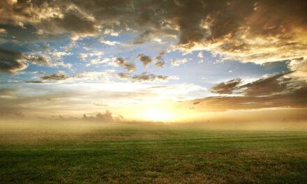 Na terra como no Céu