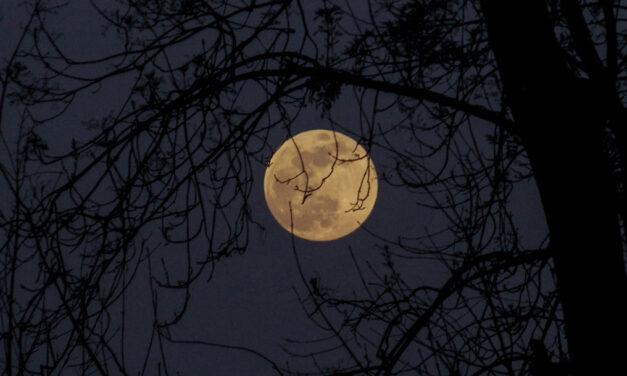 «Naquela noite…