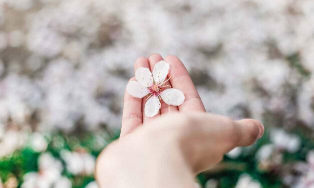 O amor ao próximo faz brotar nos corações as flores da esperança.