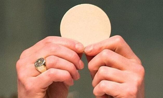 Eucaristia: o melhor fruto da árvore da Cruz
