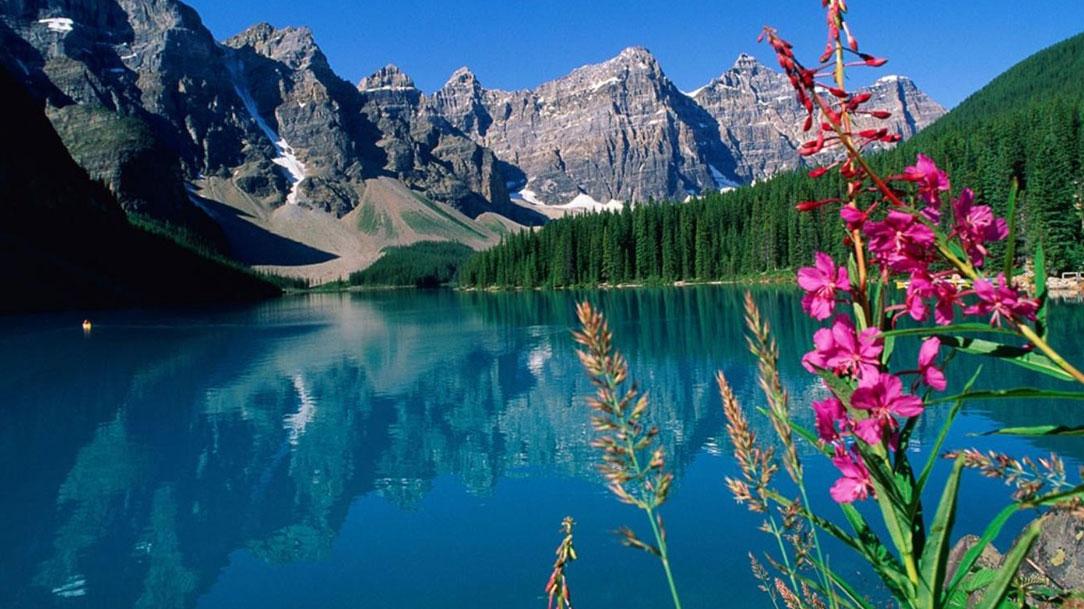Em Deus tenho todas as paisagens
