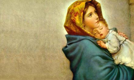 Confiar em Maria através de tudo!…
