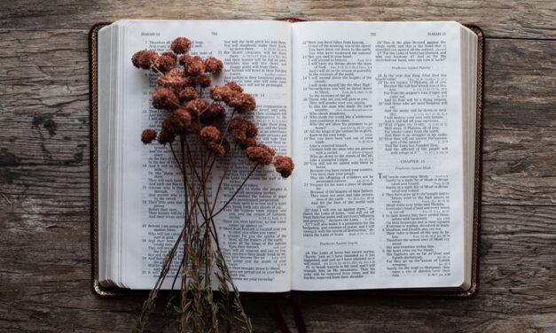 A regra do cristão